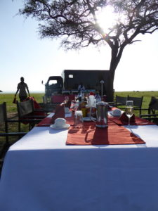 A breakfast table filled with champagne and coffee. In the back you see a truck and the small kitchen of the Balloon Safari where a chef is preparing food.