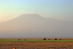 Elephants and Kili