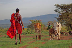 Visit a Maasai Village - included
