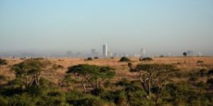 The Savannah of the Nairobi National park in the foreground, Nairobis skyscrapers in the background. An amazing possibility of safari right next to the city.